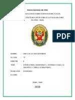 alteración-del-orden-público.docx