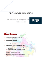 Crop Diversification New