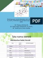 STEROID fix-rev.pptx