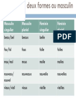 adjectifs avec 2 formes au masculin