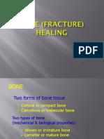 Fracture Healing.pptx