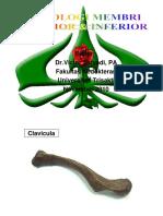 PDF TUTOR PRAKTIKUM OSTEOLOGI MEMBRI SUPERIOR & INFERIOR.pdf