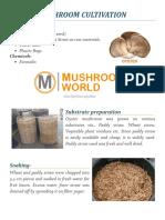 Oyster Mushroom Cultivation