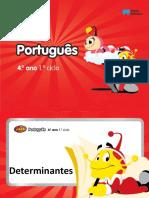 Português - determinantes
