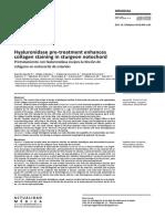 Hyaluronidase pre-treatment enhances collagen staining in sturgeon notochord