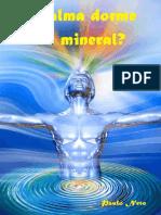 A Alma Dorme No Mineral-eBook