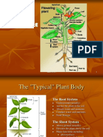 02.Agroecosystem Concept.pptx
