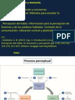 Teorico-Percepcion.-Goldstein-1 (1)