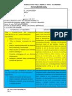 PROGRAMACIÓN ANUAL IE TUPAC AMARU II AREA COMUNICACION.docx