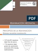 Reanimacion_presentacion.pdf