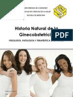 Guia Ginecología