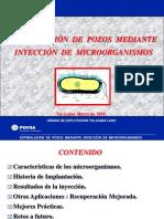 Estimulación de Pozos Mediante La Inyección de Bacterias