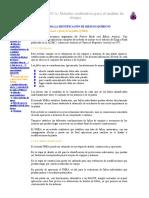 2.1.6 Análisis Del Modo y Efecto de Los Fallos (FMEA)