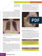 Manual Amir Radiologia10