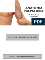 Anatomia Palpatória 04.04