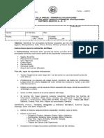 PAUTA EVALUACION MAPA TEMATICO 7 BASICO.docx
