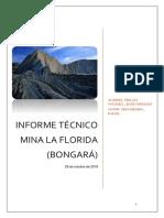 INFORME-TÉCNICO-mina-la-florida.docx LISTO.docx