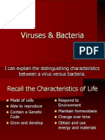 04 - viruses archaebactera and bacteria - weebly
