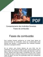 1 - Combate a Incêndios Florestais
