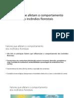2.1 Fact Comp Inc - Combustiveis Florestais