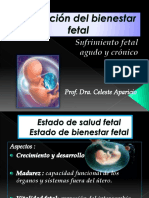 Asfixia Fetal