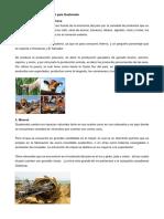 Los Sectores Productivos Del País Guatemala