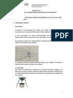 PRACTICA N° 3 EDETERMINACIÓN DEL PESO MOLECULAR DEL POLIESTIRENO POR VISCOSIMETRÍA - 2019 - 1UBRICANTE - 2019