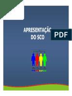 CapAraujo01.pdf