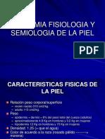 152943905 Anatomia y Fisiologia de La Piel Ppt