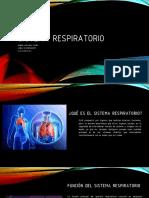 Sistema Respiratoriofinal