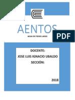 Plan de Iniciativa Empresarial dd.docx