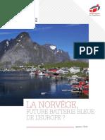 livre_blanc_la-norvege-future-batterie-bleue-de-leurope.pdf