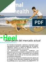 Presentacion Veterinaria Heel