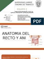 anatomia del ano.pptx
