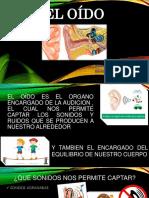 El oído.pptx
