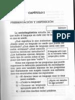 Raiter_Lenguaje en uso.pdf