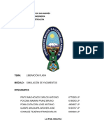 Informe - Liberación Flash.docx