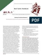 Bull Lidido Serving Capacity - Chenoweth