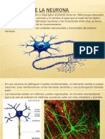 fisiologadelaneuronapresentacion-101006155916-phpapp02