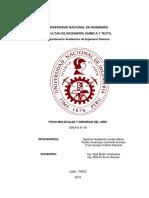 LABO 1 FIQUI (1).docx