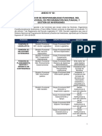 Anexo2_directiva Funcional Del PMI