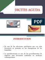 Apendicitis Aguda Diapos