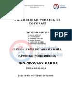 fresa-semi-hidroponico.docx