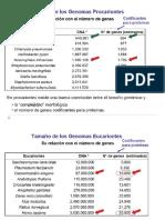 Genoma eucariota 2015-II-3.pdf
