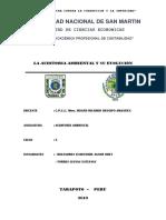 LA-AUDITORIA-AMBIENTAL-Y-SU-EVOLUCIÓN.docx