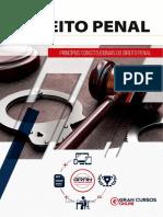16659405-principios-constitucionais-do-direito-penal.pdf