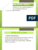 FLORA EN EL PERU.pptx