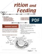 2014BeefStudyPgs.pdf
