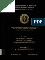 micro doc.PDF