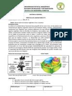 Practicas Lab 1 FLOE Ppozo (1)